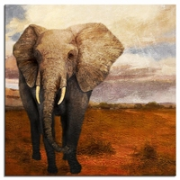 Olifanten schilderij -  Olifant uit Afrika